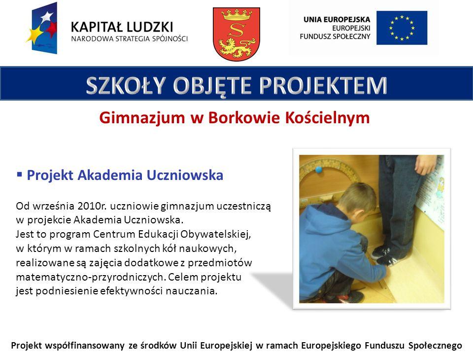 Projekt współfinansowany ze środków Unii Europejskiej w ramach Europejskiego Funduszu Społecznego Gimnazjum w Borkowie Kościelnym Projekt Akademia Uczniowska Od września 2010r.