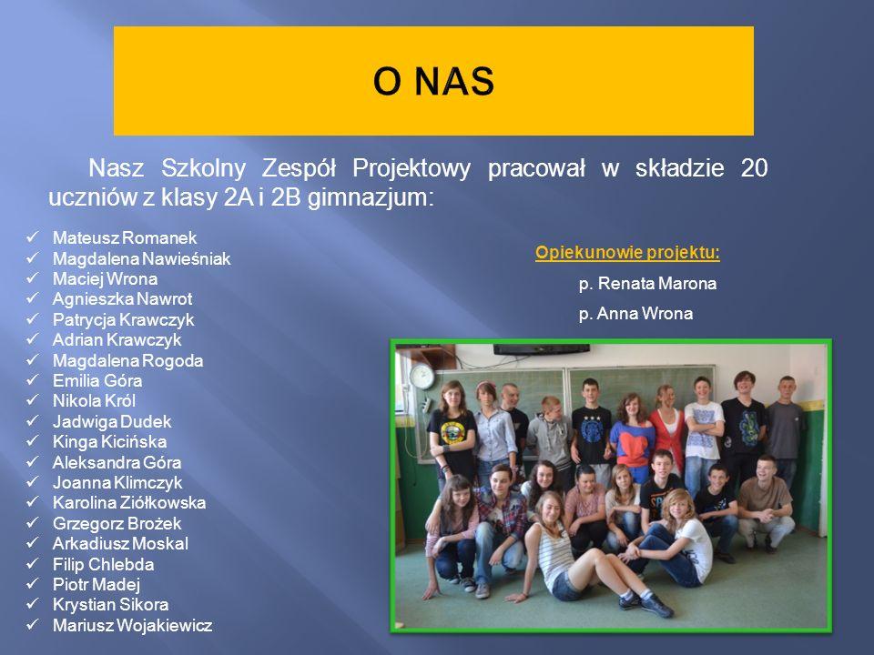 Nasz Szkolny Zespół Projektowy pracował w składzie 20 uczniów z klasy 2A i 2B gimnazjum: Mateusz Romanek Magdalena Nawieśniak Maciej Wrona Agnieszka N