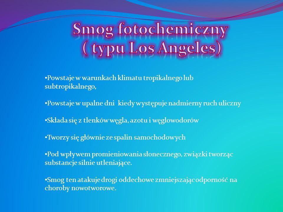Powstaje w warunkach klimatu tropikalnego lub subtropikalnego, Powstaje w upalne dni kiedy występuje nadmierny ruch uliczny Składa się z tlenków węgla