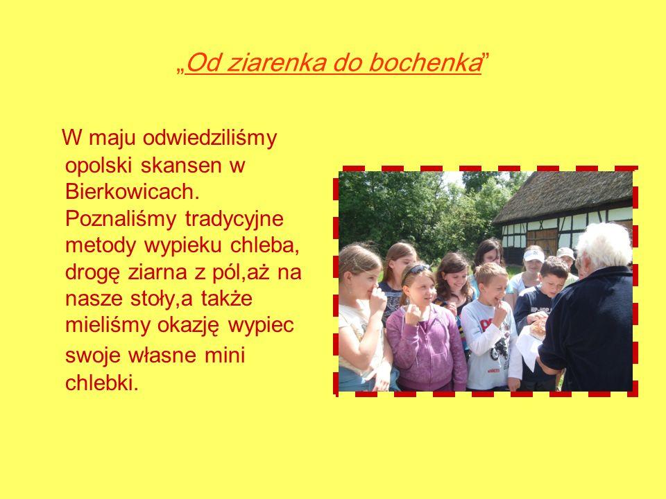 Od ziarenka do bochenka W maju odwiedziliśmy opolski skansen w Bierkowicach.