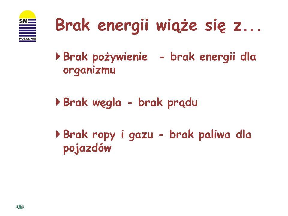 Energia Pożywienie dla organizmu Prąd elektryczny w telewizorze Paliwo w samochodzie