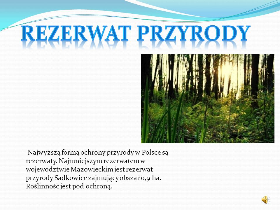 Najwyższą formą ochrony przyrody w Polsce są rezerwaty. Najmniejszym rezerwatem w województwie Mazowieckim jest rezerwat przyrody Sadkowice zajmujący