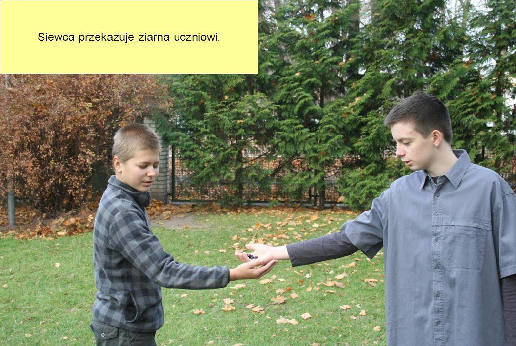 Siewca przekazuje ziarna uczniowi.