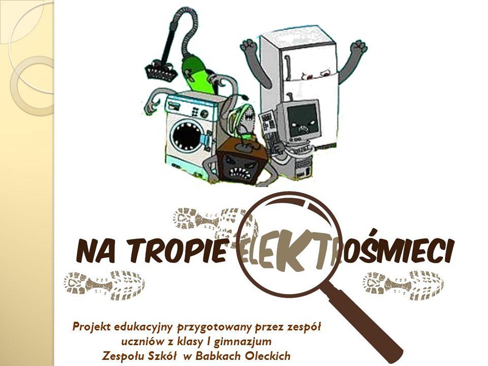 Projekt edukacyjny przygotowany przez zespół uczniów z klasy I gimnazjum Zespołu Szkół w Babkach Oleckich