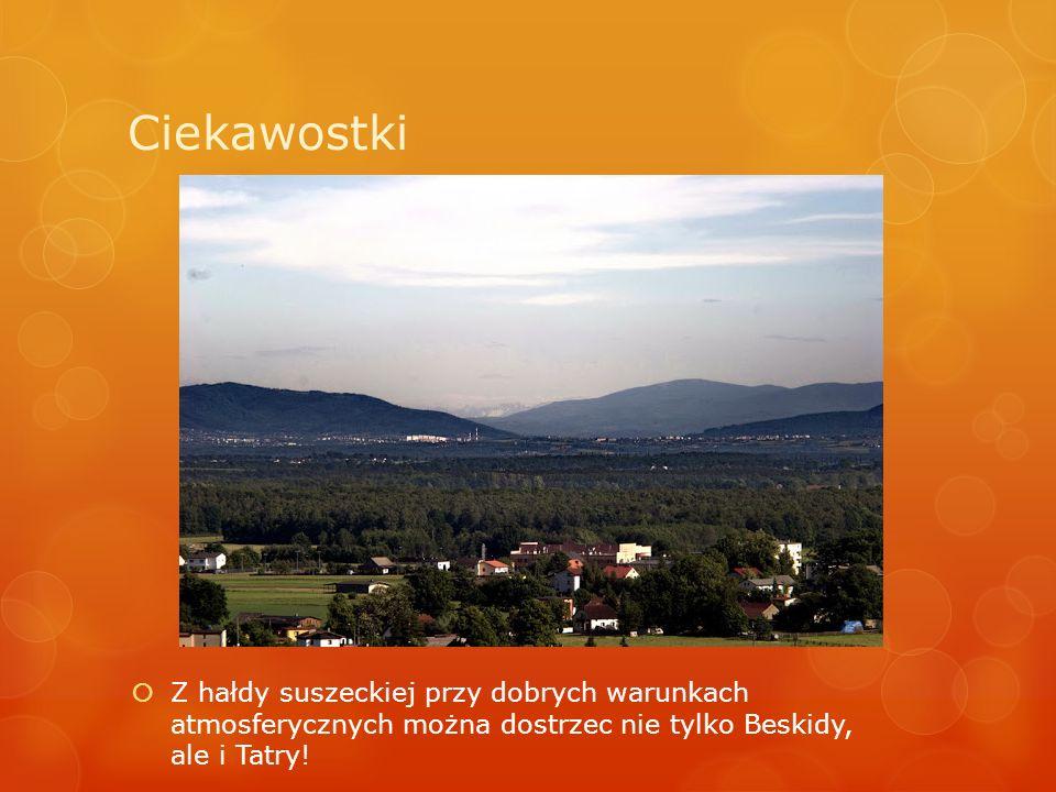 Ciekawostki Z hałdy suszeckiej przy dobrych warunkach atmosferycznych można dostrzec nie tylko Beskidy, ale i Tatry!