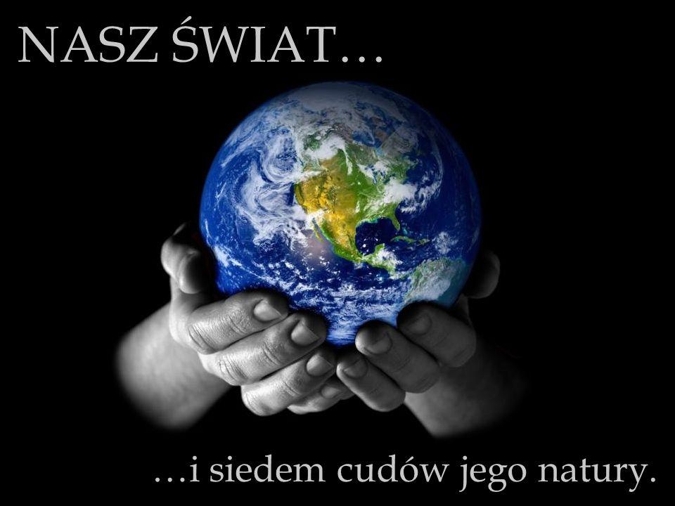 Białowieski Park Narodowy, choć jeden z najcenniejszych w skali światowej, do dziś jest jednym z najmniejszych w Polsce.