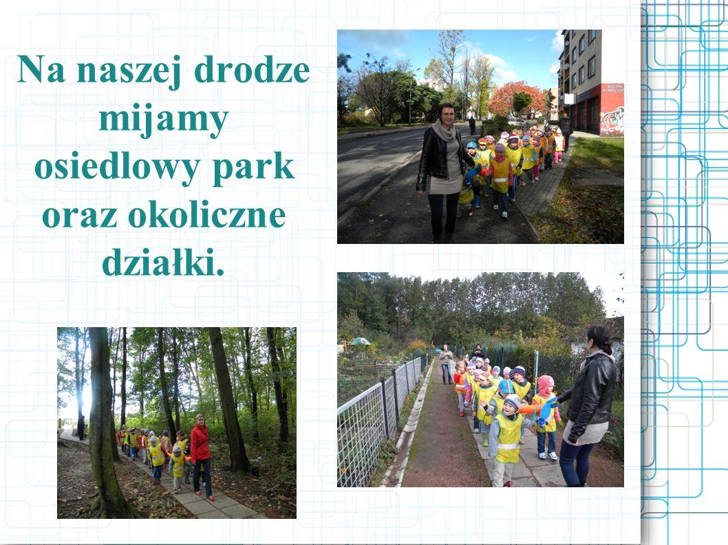 Z parku dzieci dotarły do Domu Kultury, odwiedziły również Bibliotekę Miejską..