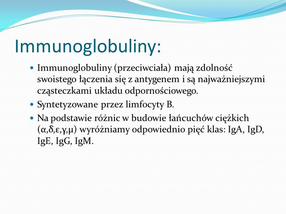 Immunoglobuliny: Immunoglobuliny (przeciwciała) mają zdolność swoistego łączenia się z antygenem i są najważniejszymi cząsteczkami układu odpornościowego.