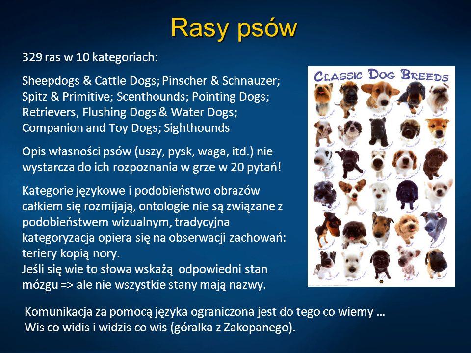 Rasy psów 329 ras w 10 kategoriach: Sheepdogs & Cattle Dogs; Pinscher & Schnauzer; Spitz & Primitive; Scenthounds; Pointing Dogs; Retrievers, Flushing