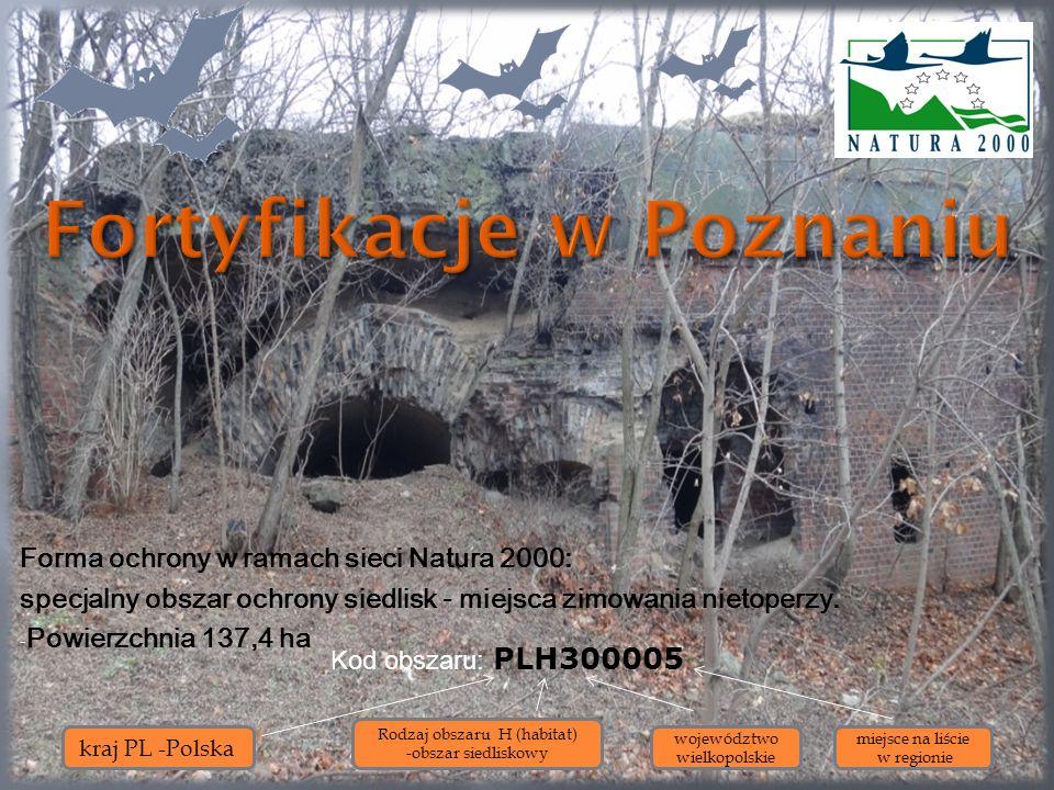Forma ochrony w ramach sieci Natura 2000: specjalny obszar ochrony siedlisk - miejsca zimowania nietoperzy. - Powierzchnia 137,4 ha Kod obszaru: PLH30