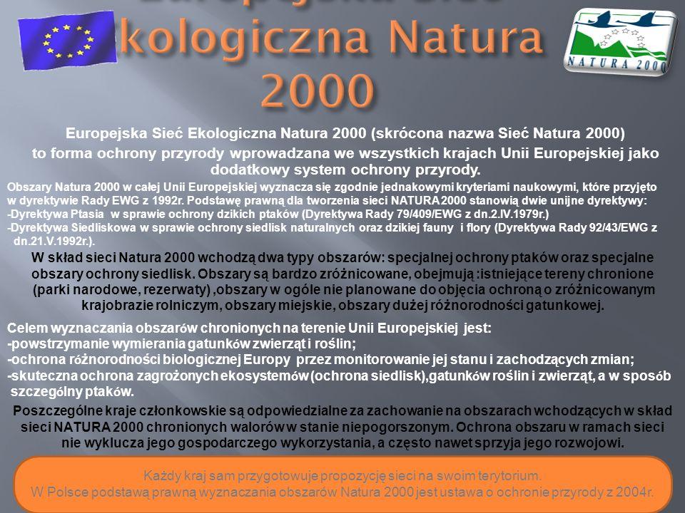Europejska Sieć Ekologiczna Natura 2000 (skrócona nazwa Sieć Natura 2000) to forma ochrony przyrody wprowadzana we wszystkich krajach Unii Europejskie