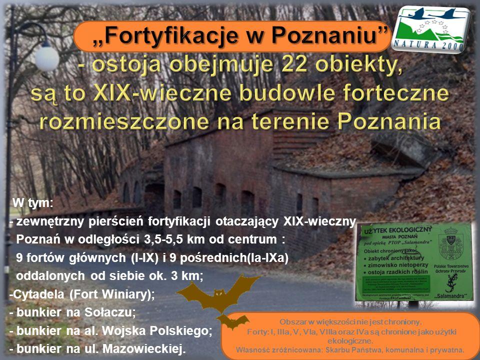 W tym: - zewnętrzny pierścień fortyfikacji otaczający XIX-wieczny Poznań w odległości 3,5-5,5 km od centrum : 9 fortów głównych (I-IX) i 9 pośrednich(