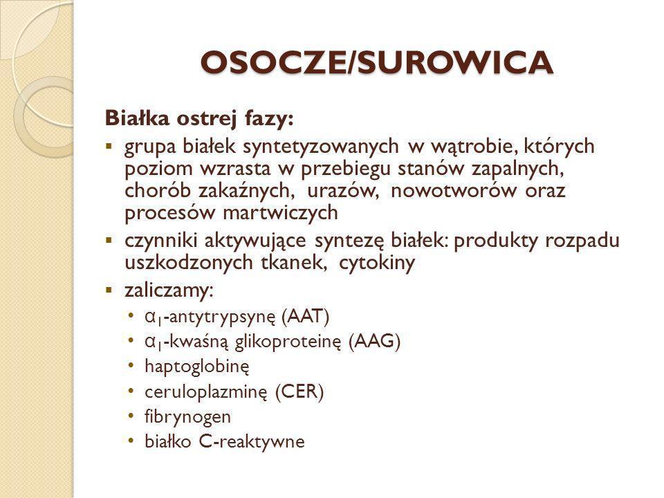 OSOCZE/SUROWICA Białka ostrej fazy: grupa białek syntetyzowanych w wątrobie, których poziom wzrasta w przebiegu stanów zapalnych, chorób zakaźnych, ur