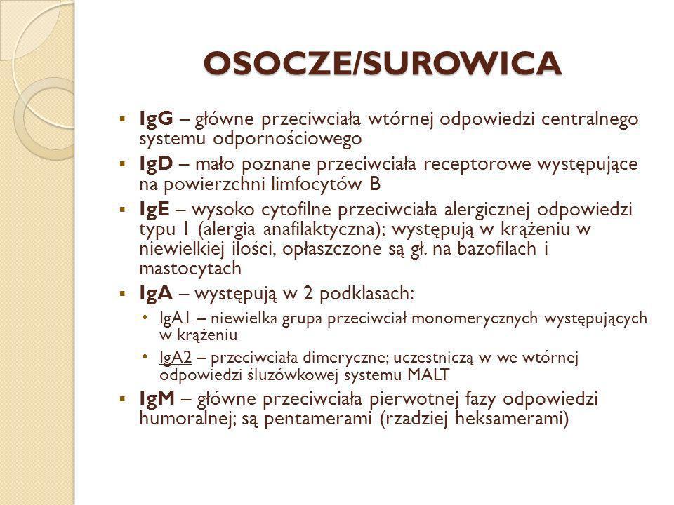 OSOCZE/SUROWICA IgG – główne przeciwciała wtórnej odpowiedzi centralnego systemu odpornościowego IgD – mało poznane przeciwciała receptorowe występują