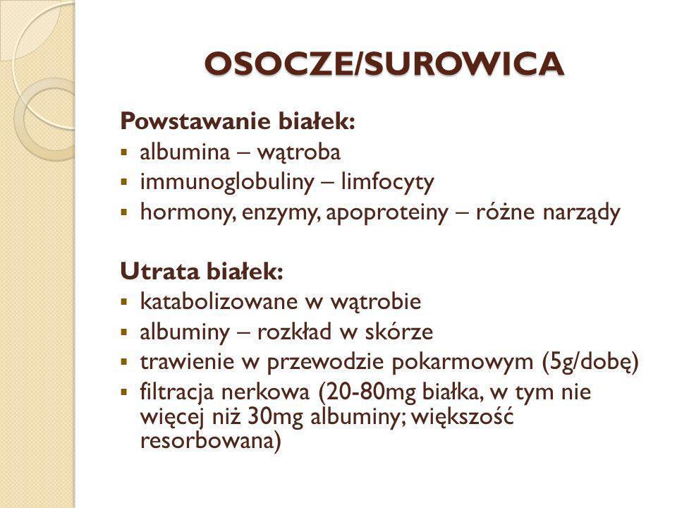 OSOCZE/SUROWICA Powstawanie białek: albumina – wątroba immunoglobuliny – limfocyty hormony, enzymy, apoproteiny – różne narządy Utrata białek: katabol