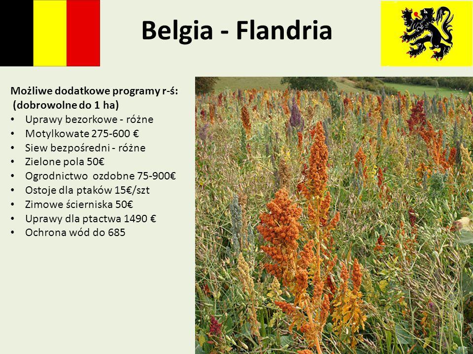 Belgia - Flandria Możliwe dodatkowe programy r-ś: (dobrowolne do 1 ha) Uprawy bezorkowe - różne Motylkowate 275-600 Siew bezpośredni - różne Zielone p