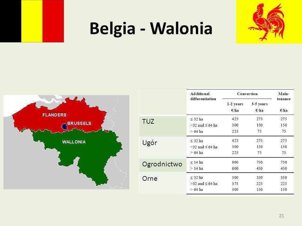 Belgia - Walonia TUZ Ugór Ogrodnictwo Orne 21