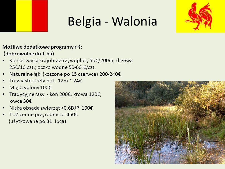 Belgia - Walonia Możliwe dodatkowe programy r-ś: (dobrowolne do 1 ha) Konserwacja krajobrazu żywopłoty 5o/200m; drzewa 25/10 szt.; oczko wodne 50-60 /