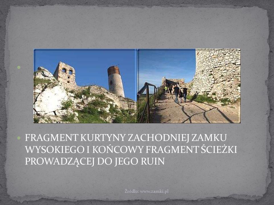 FRAGMENT KURTYNY ZACHODNIEJ ZAMKU WYSOKIEGO I KOŃCOWY FRAGMENT ŚCIEŻKI PROWADZĄCEJ DO JEGO RUIN Źródło: www.zamki.pl