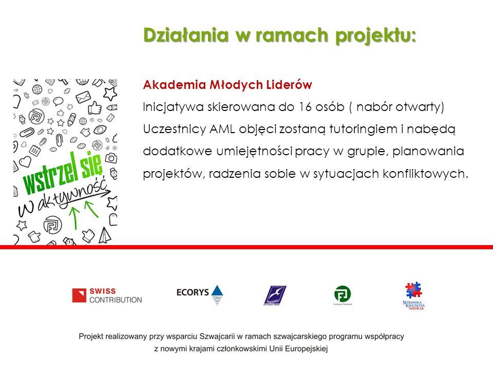 Działania w ramach projektu: Akademia Młodych Liderów Inicjatywa skierowana do 16 osób ( nabór otwarty) Uczestnicy AML objęci zostaną tutoringiem i nabędą dodatkowe umiejętności pracy w grupie, planowania projektów, radzenia sobie w sytuacjach konfliktowych.