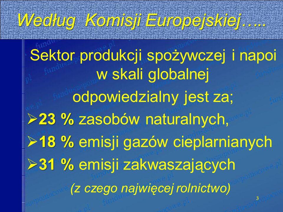 Według Komisji Europejskiej…..