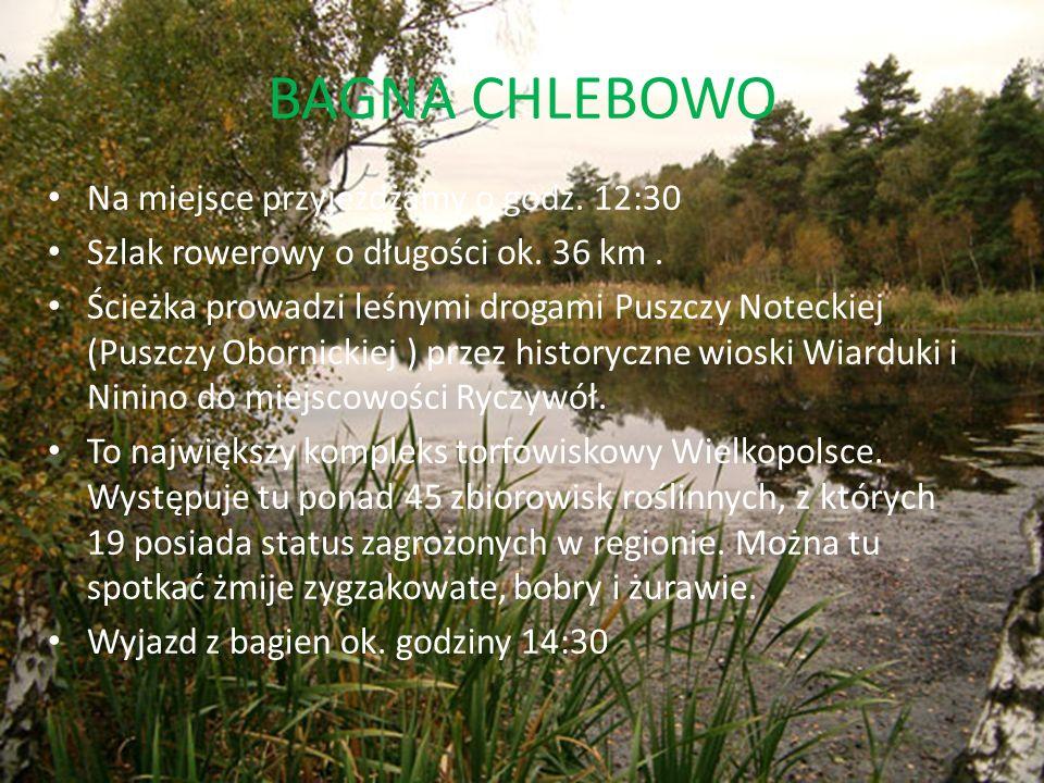 BAGNA CHLEBOWO Na miejsce przyjeżdżamy o godz. 12:30 Szlak rowerowy o długości ok. 36 km. Ścieżka prowadzi leśnymi drogami Puszczy Noteckiej (Puszczy