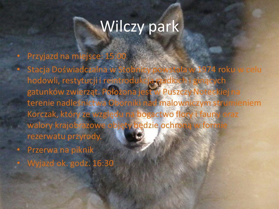 Wilczy park Przyjazd na miejsce: 15:00 Stacja Doświadczalna w Stobnicy powstała w 1974 roku w celu hodowli, restytucji i reintrodukcja rzadkich i giną