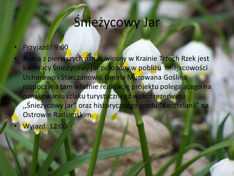 Śnieżycowy Jar Przyjazd : 9:00 Jedną z pierwszych oznak wiosny w Krainie Trzech Rzek jest kwitnący Śnieżycowy jar położony w pobliżu miejscowości Ucho