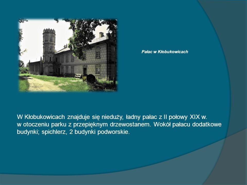 Pałac w Kłobukowicach W Kłobukowicach znajduje się nieduży, ładny pałac z II połowy XIX w. w otoczeniu parku z przepięknym drzewostanem. Wokół pałacu
