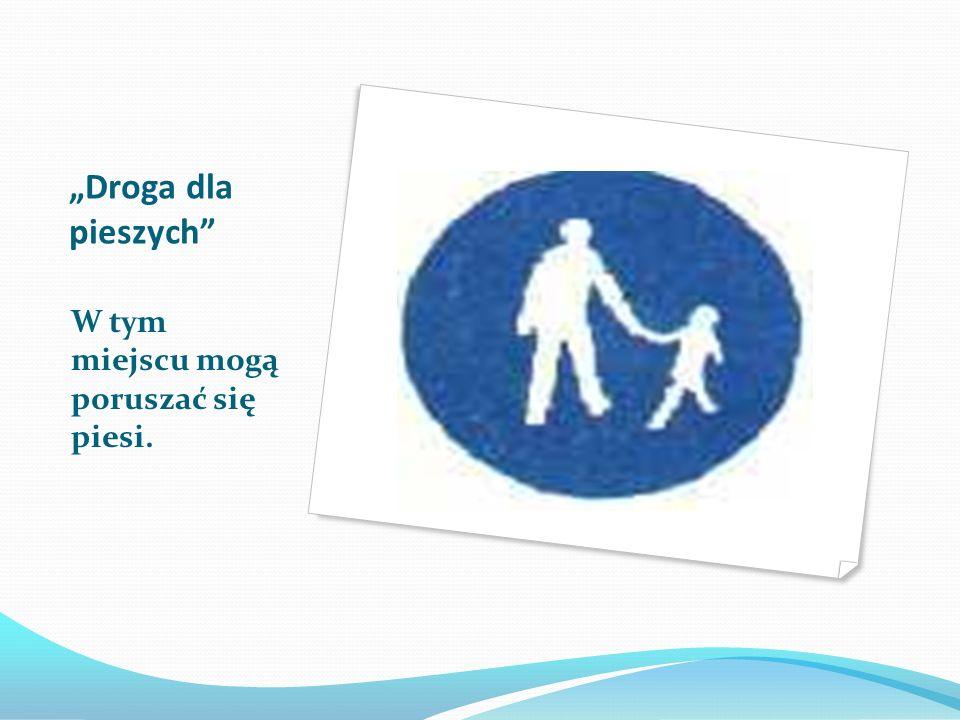 Agatka Znak Agatka oznacza, że jest to najbezpieczniejsze przejście w okolicy. Kierowcy wiedzą, że na tym przejściu mogą spodziewać się dzieci.