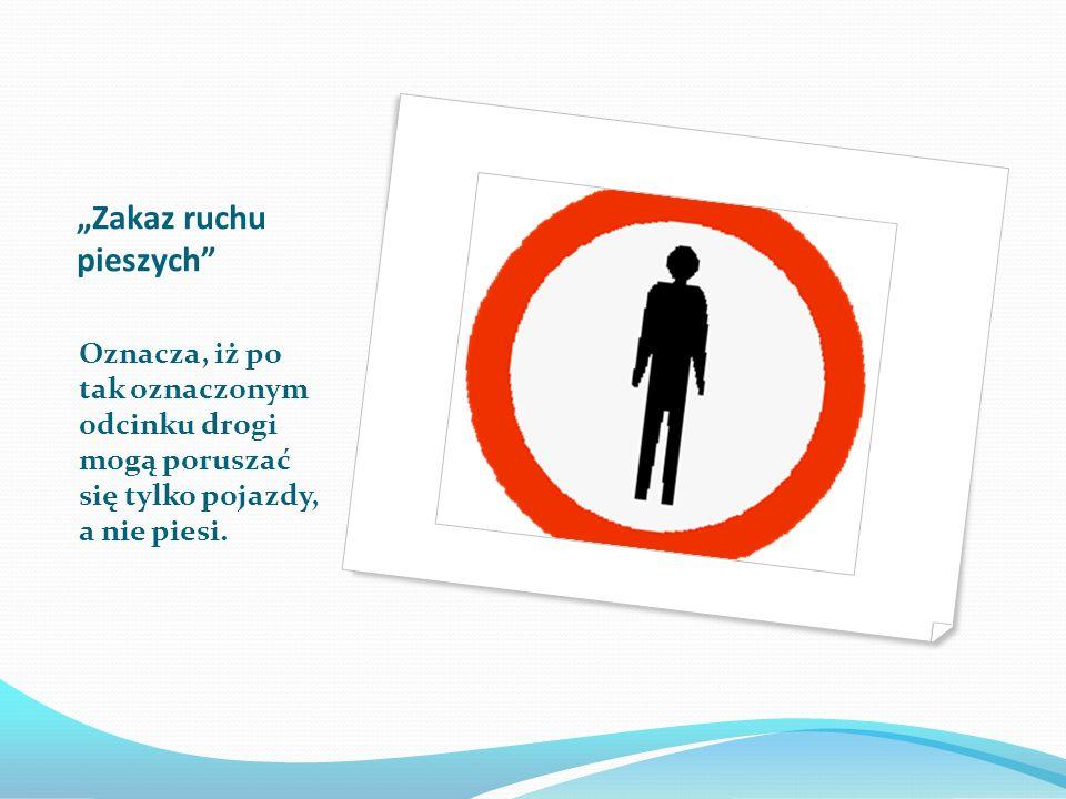 Miejsce przejścia dla pieszych Znak postawiony przed oznakowanym pasami przejściem dla pieszych.