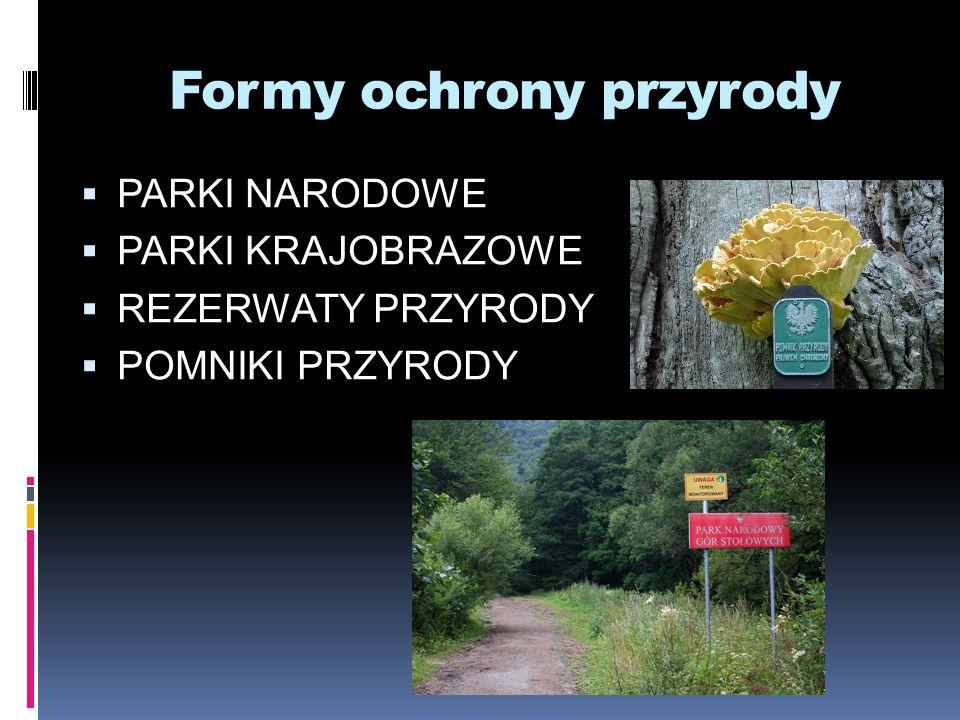 Formy ochrony przyrody PARKI NARODOWE PARKI KRAJOBRAZOWE REZERWATY PRZYRODY POMNIKI PRZYRODY