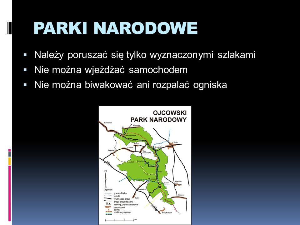 PARKI KRAJOBRAZOWE Jest ich w Polsce 121 Można w nich budować obiekty zgodnie z przepisami Wolno uprawiać pola Prowadzi się gospodarkę leśną, porządkuje las