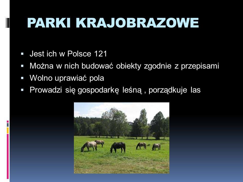 PARKI KRAJOBRAZOWE Jest ich w Polsce 121 Można w nich budować obiekty zgodnie z przepisami Wolno uprawiać pola Prowadzi się gospodarkę leśną, porządku