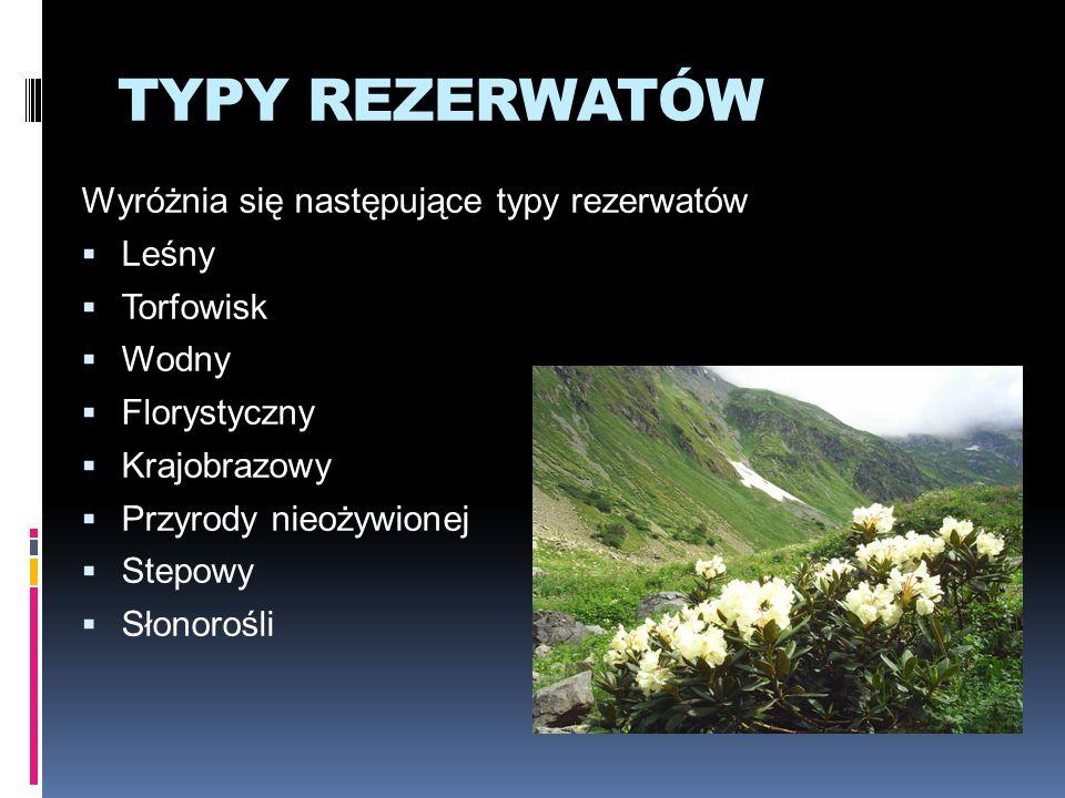 TYPY REZERWATÓW Wyróżnia się następujące typy rezerwatów Leśny Torfowisk Wodny Florystyczny Krajobrazowy Przyrody nieożywionej Stepowy Słonorośli