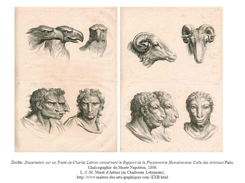 Źródło: Dissertation sur un Traité de Charles Lebrun concernant le Rapport de la Physionomie Humaine avec Celle des Animaux Paris, Chalcographie du Mu