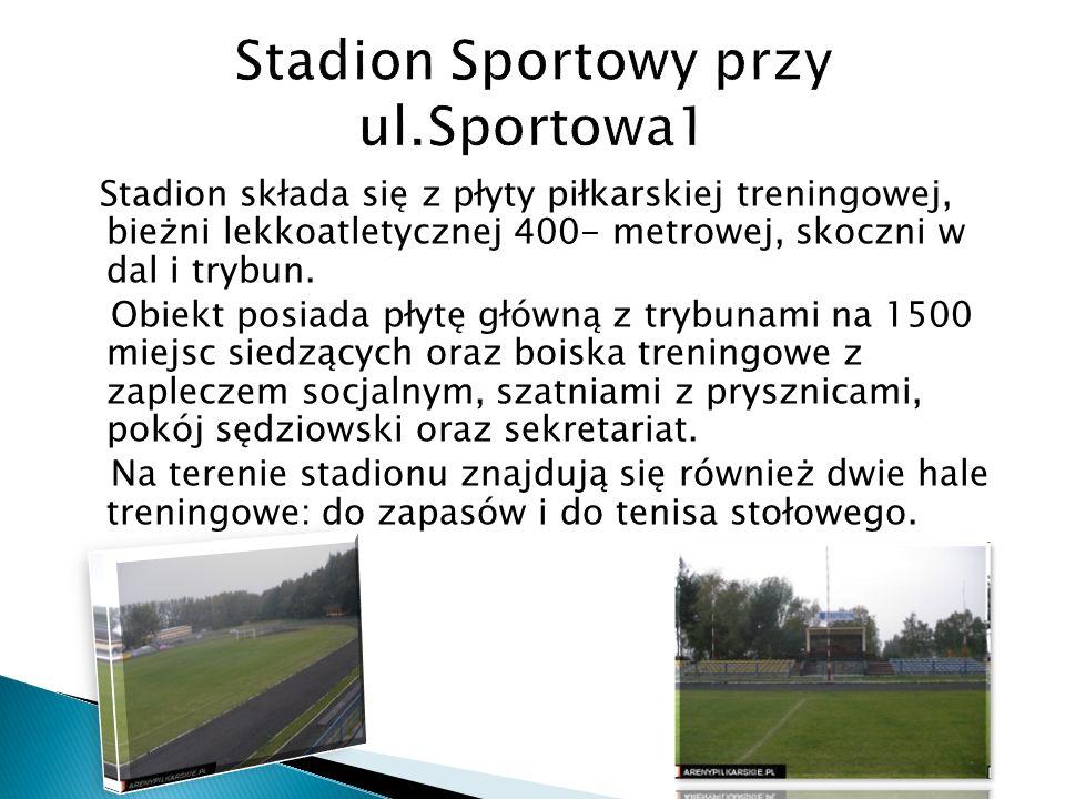 Stadion składa się z płyty piłkarskiej treningowej, bieżni lekkoatletycznej 400- metrowej, skoczni w dal i trybun. Obiekt posiada płytę główną z trybu