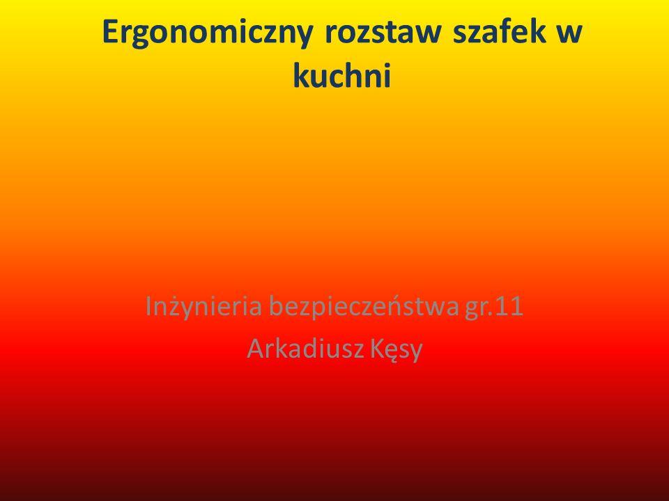 Ergonomiczny rozstaw szafek w kuchni Inżynieria bezpieczeństwa gr.11 Arkadiusz Kęsy
