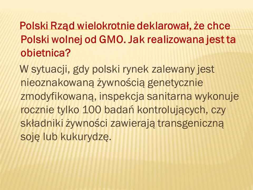 Polski Rząd wielokrotnie deklarował, że chce Polski wolnej od GMO. Jak realizowana jest ta obietnica? W sytuacji, gdy polski rynek zalewany jest nieoz