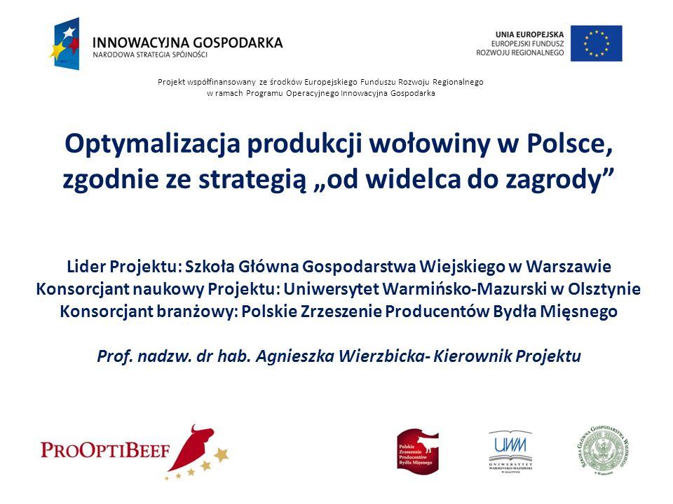Projekt współfinansowany ze środków Europejskiego Funduszu Rozwoju Regionalnego w ramach Programu Operacyjnego Innowacyjna Gospodarka Optymalizacja pr