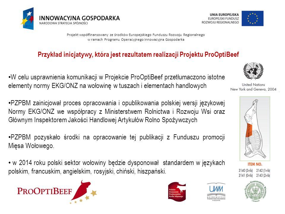 Projekt współfinansowany ze środków Europejskiego Funduszu Rozwoju Regionalnego w ramach Programu Operacyjnego Innowacyjna Gospodarka Przykład inicjat