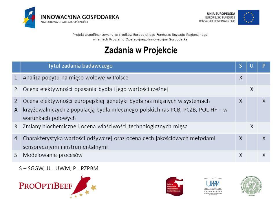 Projekt współfinansowany ze środków Europejskiego Funduszu Rozwoju Regionalnego w ramach Programu Operacyjnego Innowacyjna Gospodarka Tytuł zadania ba