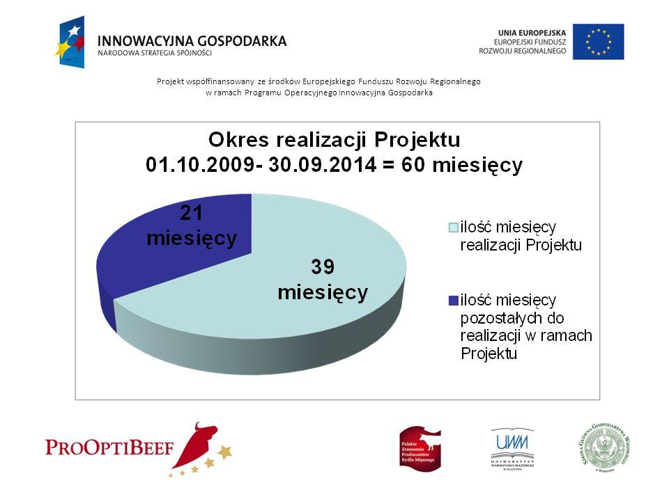 Projekt współfinansowany ze środków Europejskiego Funduszu Rozwoju Regionalnego w ramach Programu Operacyjnego Innowacyjna Gospodarka