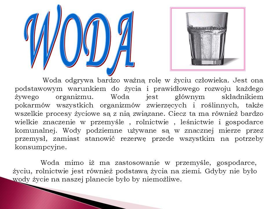 Woda odgrywa bardzo ważną rolę w życiu człowieka. Jest ona podstawowym warunkiem do życia i prawidłowego rozwoju każdego żywego organizmu. Woda jest g