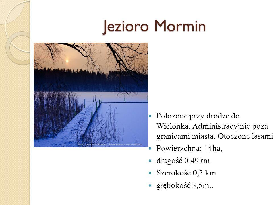 Położone przy drodze do Wielonka. Administracyjnie poza granicami miasta. Otoczone lasami Powierzchna: 14ha, długość 0,49km Szerokość 0,3 km głębokość