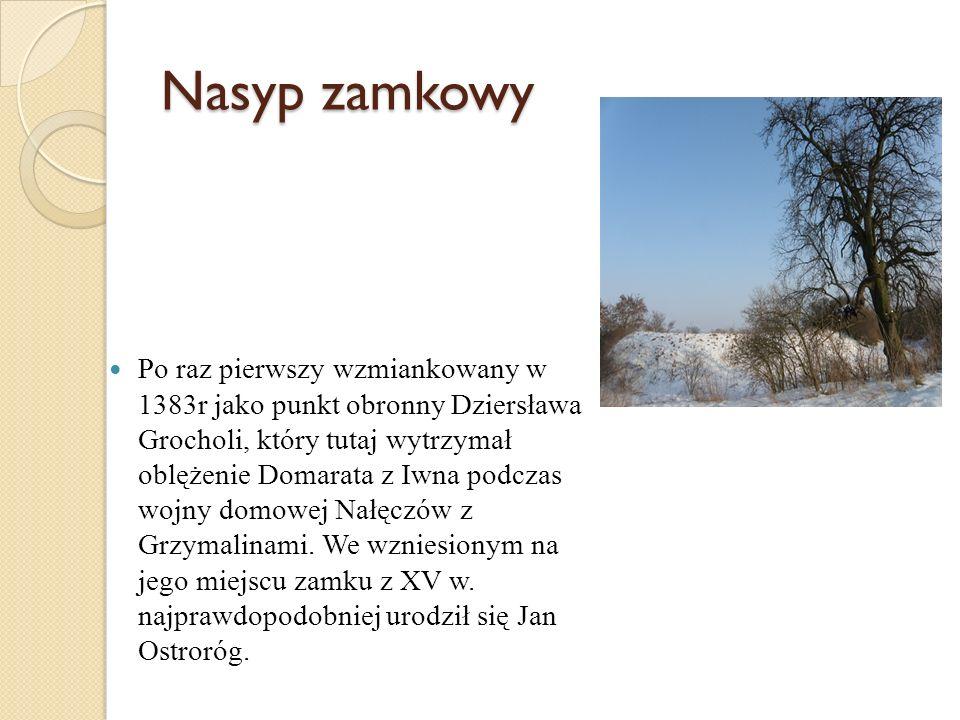 Po raz pierwszy wzmiankowany w 1383r jako punkt obronny Dziersława Grocholi, który tutaj wytrzymał oblężenie Domarata z Iwna podczas wojny domowej Nał