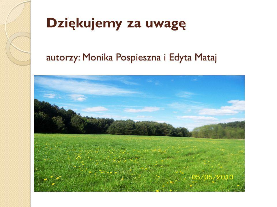 autorzy: Monika Pospieszna i Edyta Mataj Dziękujemy za uwagę autorzy: Monika Pospieszna i Edyta Mataj