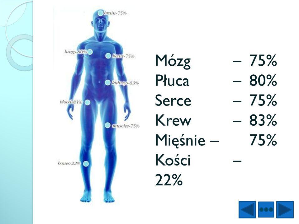 Mózg – 75% Płuca – 80% Serce – 75% Krew – 83% Mięśnie – 75% Kości – 22%