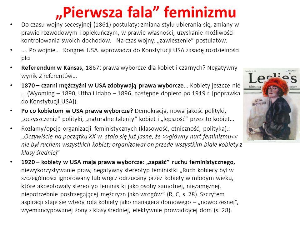 Pierwsza fala feminizmu Do czasu wojny secesyjnej (1861) postulaty: zmiana stylu ubierania się, zmiany w prawie rozwodowym i opiekuńczym, w prawie wła