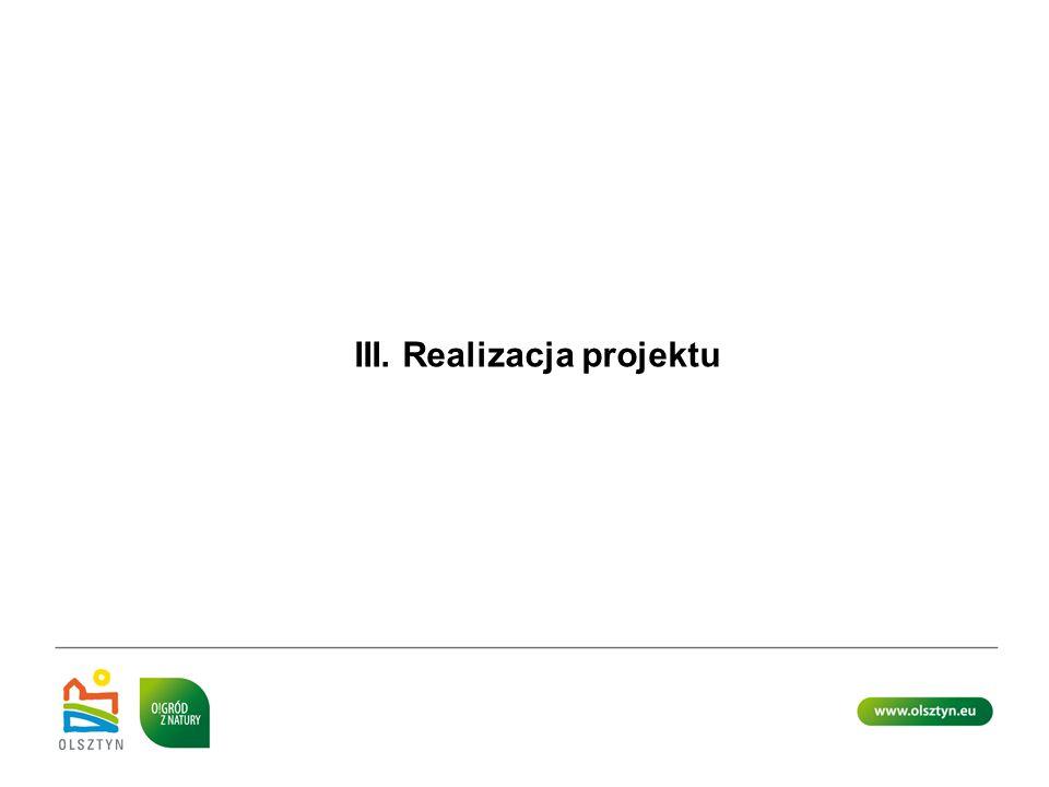III. Realizacja projektu